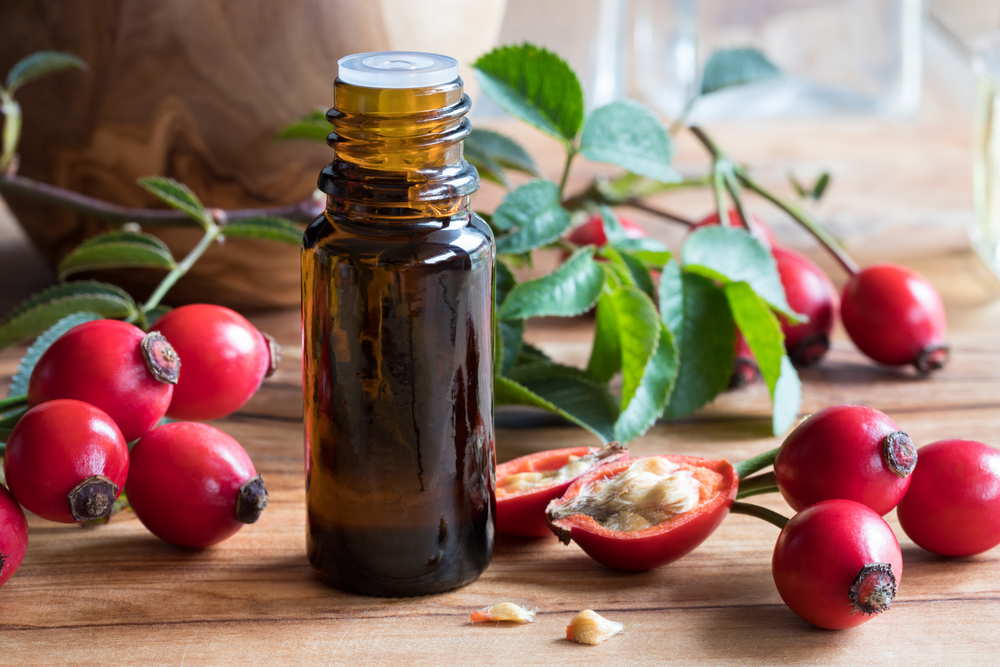 How To Make Cold Pressed Rosehip Oil?